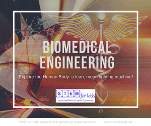 Biomedical Engineering camps and afterschool programs for kids