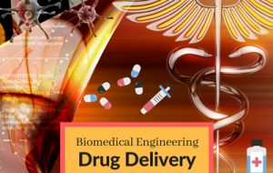DrugDelivery-BiomedicalEngineering Summer Camps Afterschool Classes